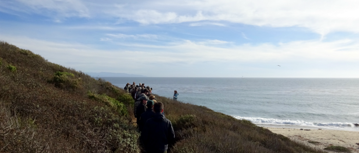 2015 Invasive plant symposium hike, view of hikers with lagoon and pacific ocean in background.