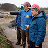 UC President Napolitano visits UCSC Año Nuevo Natural Reserve